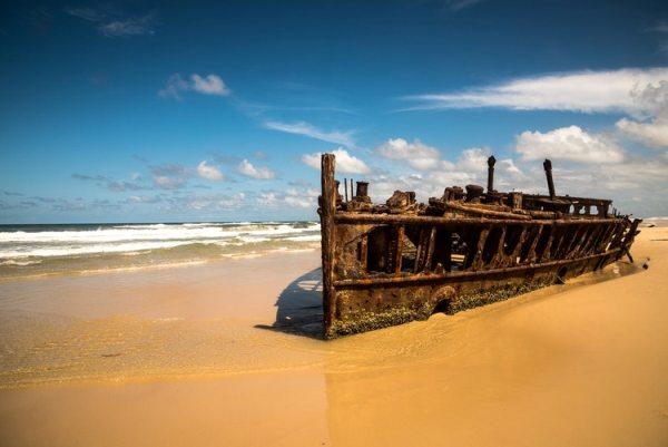 Detalles Del Arca De Noé –  Joe Owen