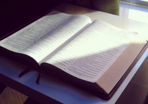 Sujetandonos A Dios Y A Las Autoridades – Maria Darling